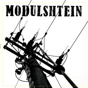 Modulshtein_Vynil